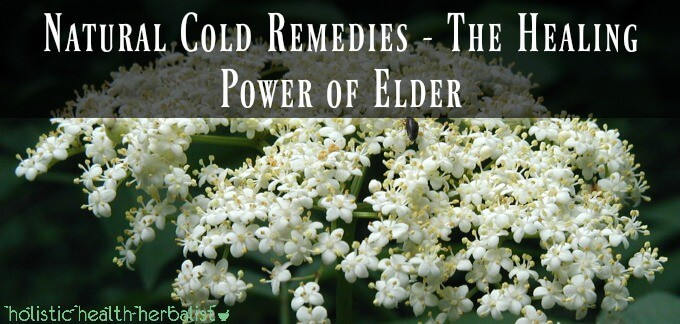 Natural Cold Remedies Part 1- The Healing Power of Elder