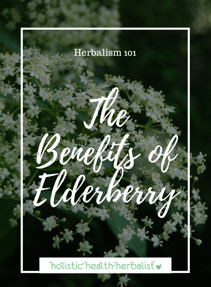 The Benefits of Elderberry - Learn about this amazing immune stimulating herb that is effective against eight types of flu virus.