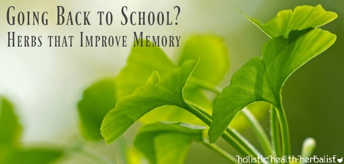 Going Back to School? Herbs that Improve Memory