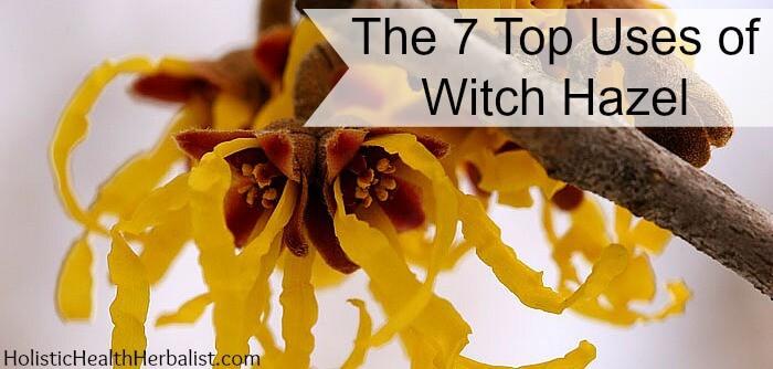 how to use witch hazel 7 ways