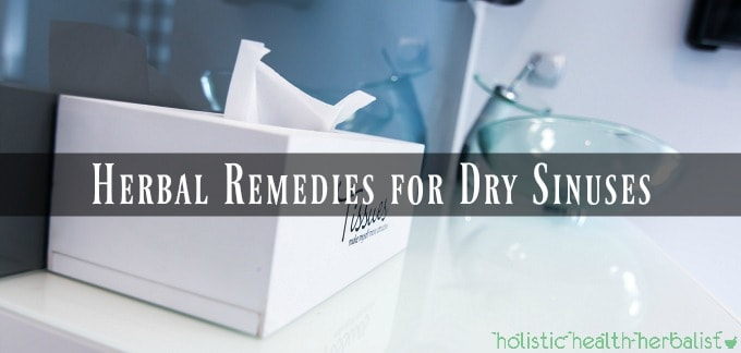 Herbal Remedies for Dry Sinuses