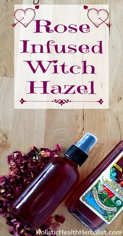 Rose Infused Witch Hazel - Learn how to make a simple yet effective rose petal infused witch hazel that helps balance the skin's PH and softens skin.