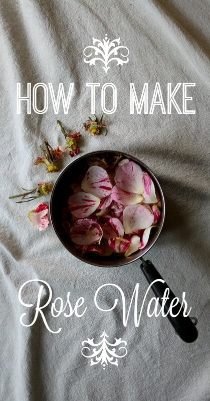 How to Make Rose Water - Learn how to make an amazing rose water with fresh roses from your back yard OR high quality dried roses. Rose water is great for both aging and acne prone skin types because of its ability to balance the skin's PH and moisturize.