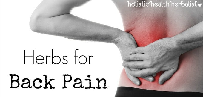 Herbs for back pain that really work!