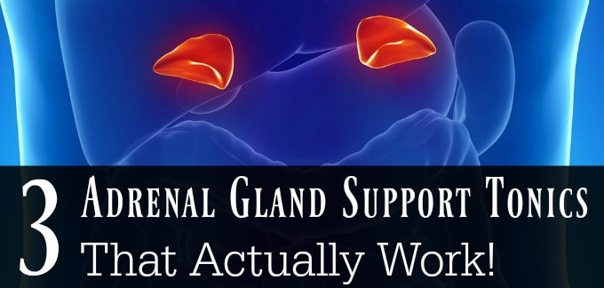 3 Adrenal Gland Support Tonics That Actually Work!