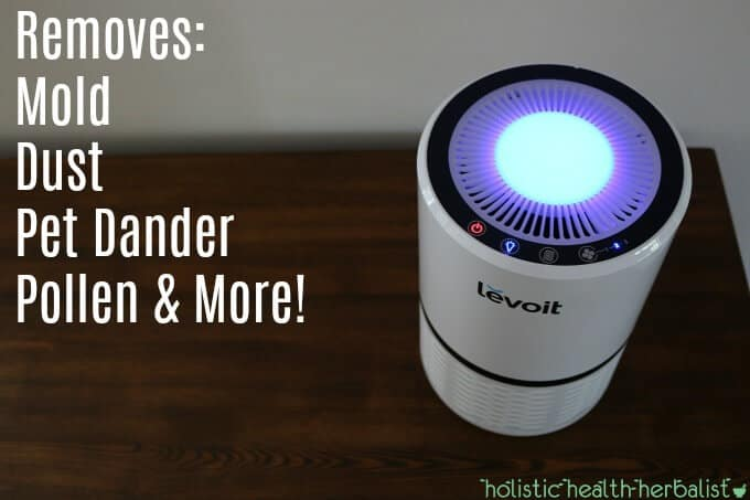 The Amazing Health Benefits of Using an Air Purifier