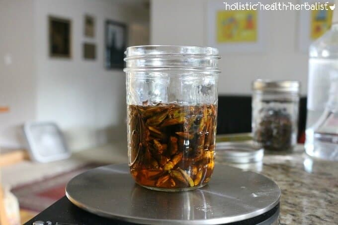 How to Make Cottonwood Tincture