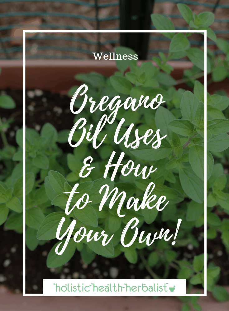 Oregano Oil Uses and Benefits and How to Make Your Own!