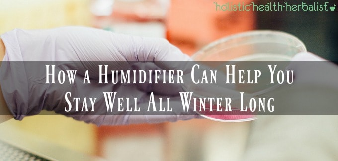 How a Humidifier Can Help You Stay Well All Winter Long